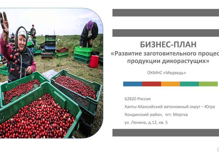 Бизнес-план «Развитие заготовительного процесса продукции дикорастущих»