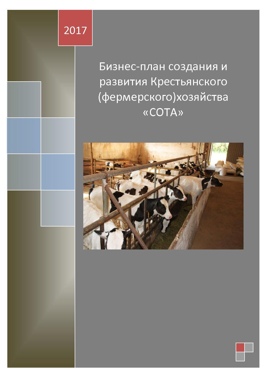 Бизнес-план создания и развития Крестьянского (фермерского)хозяйства «СОТА»