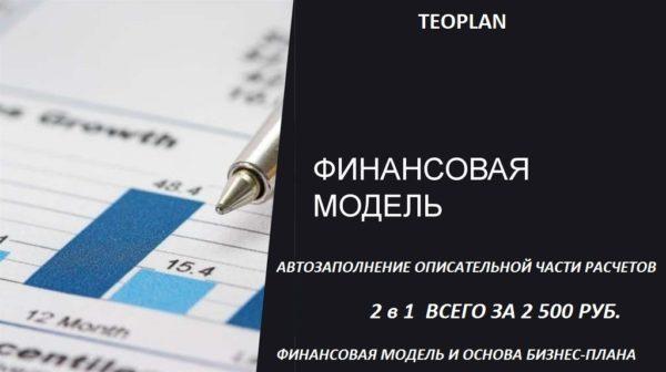 финансовая модель с описанием