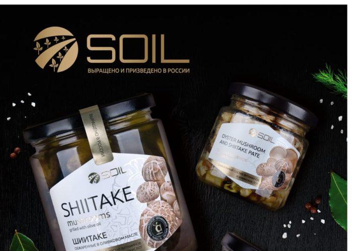Бизнес-план «Комплекс по выращиванию и переработке грибов вешенка и шиитаке до 3000 тонн в год»